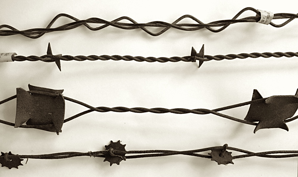 barbedwire1