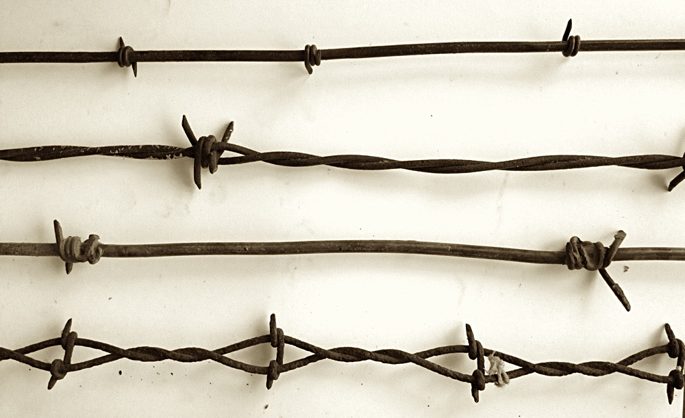 barbedwire5