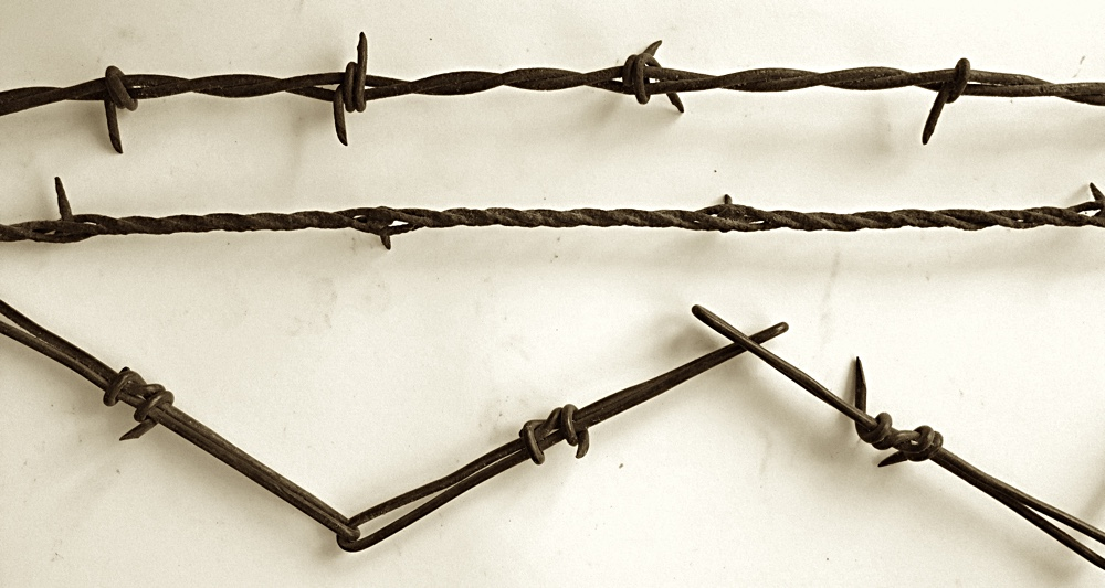 barbedwire6