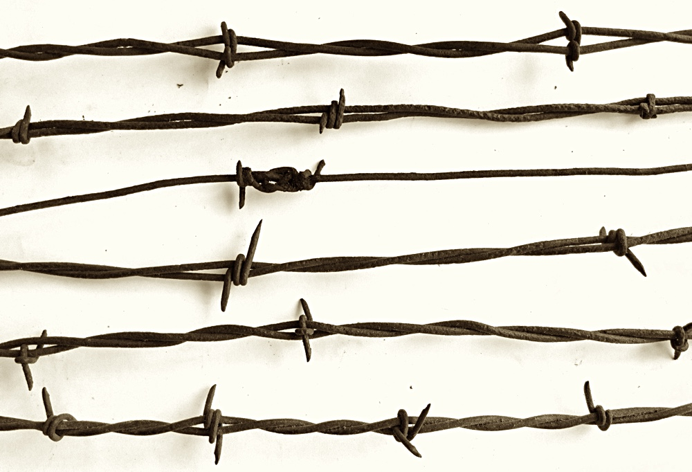 Barbed Wire! - ... Barbed